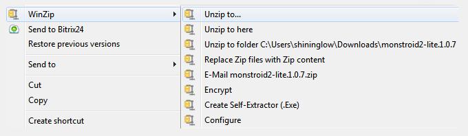 WinZip installation