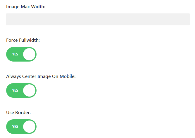 Image module advanced settings