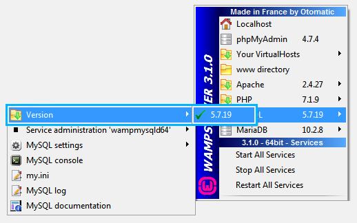 Tutorials -How to Install WordPress Theme on Local Server