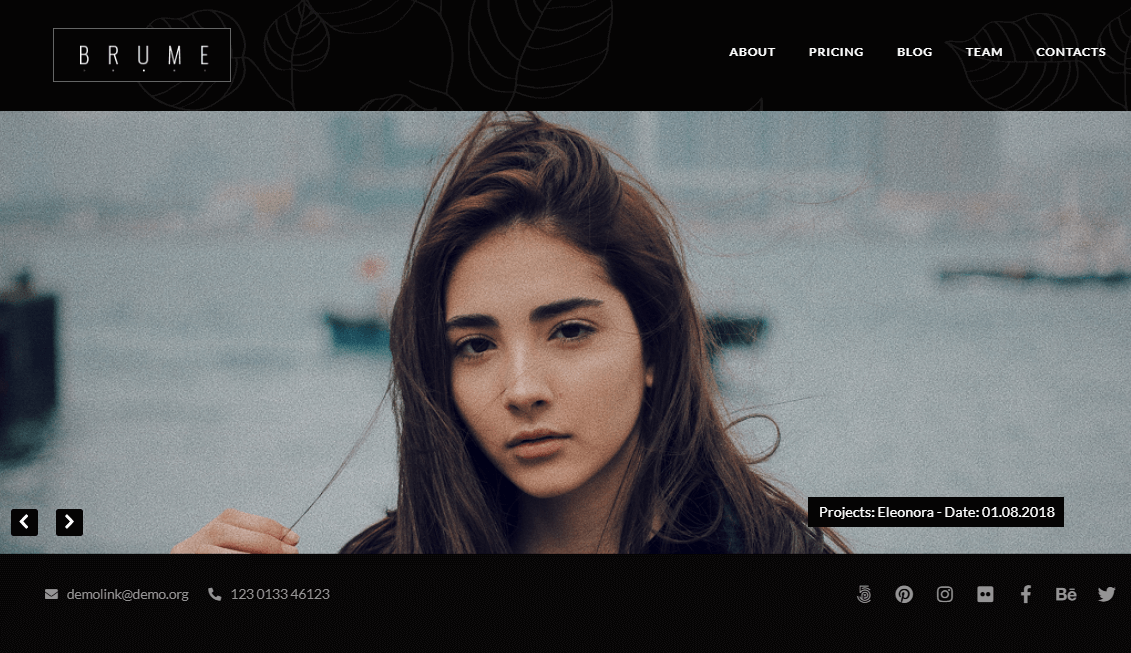 best gallery wordpress themes