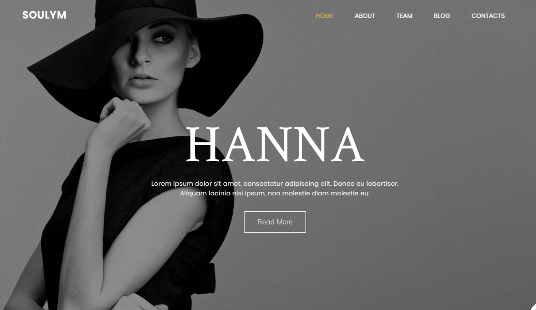soulym wordpress themes