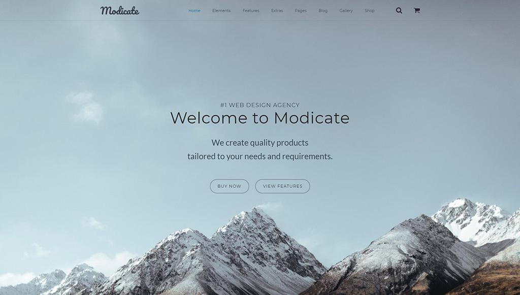 Modicate - Web Design Studio Website Template